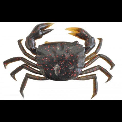 crab-black-crab-top9-500×500